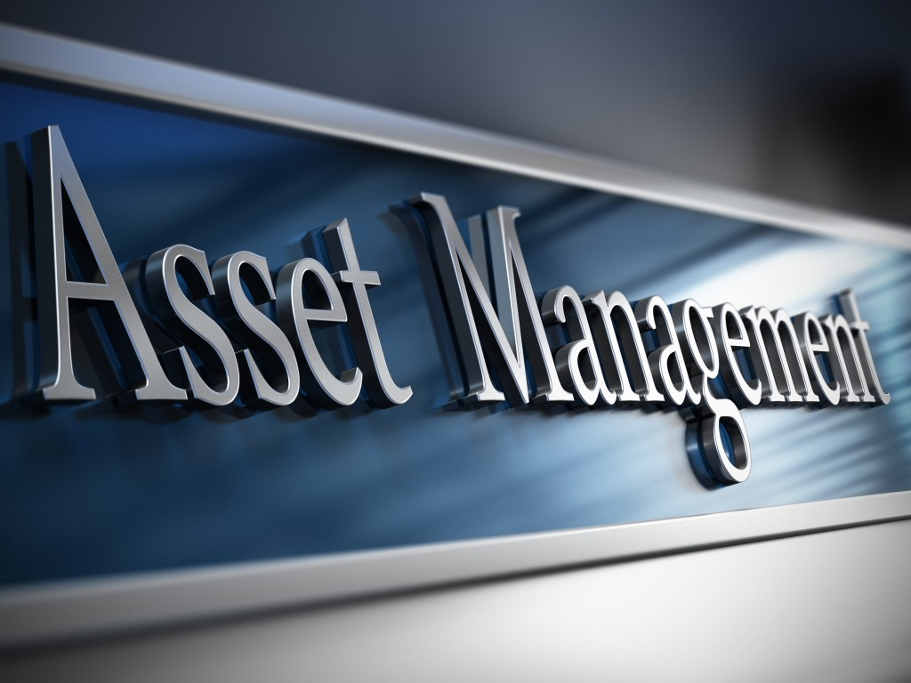 Asset-Management-1024x768